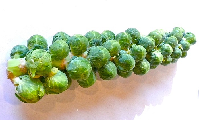 Brussels-Sprouts-3