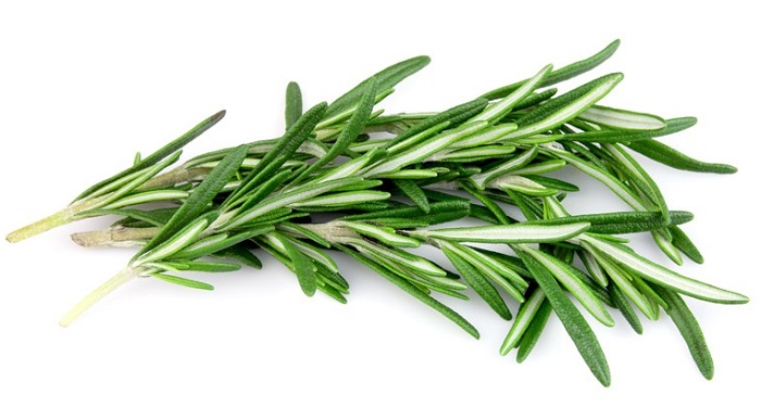 Rosemary-2