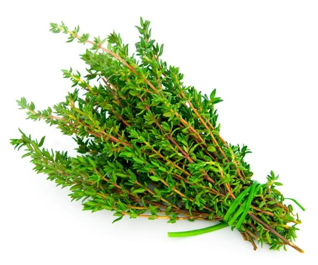 Thyme Nutrition Facts - Health Benefits, Nutritional Value & Calories