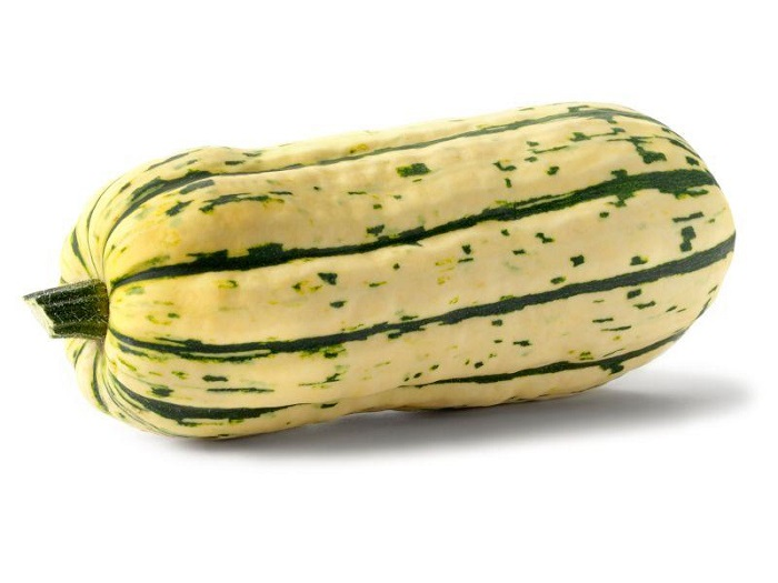 Photo Credit  http://garden.lovetoknow.com/wiki/Winter_Squash_Identification#7