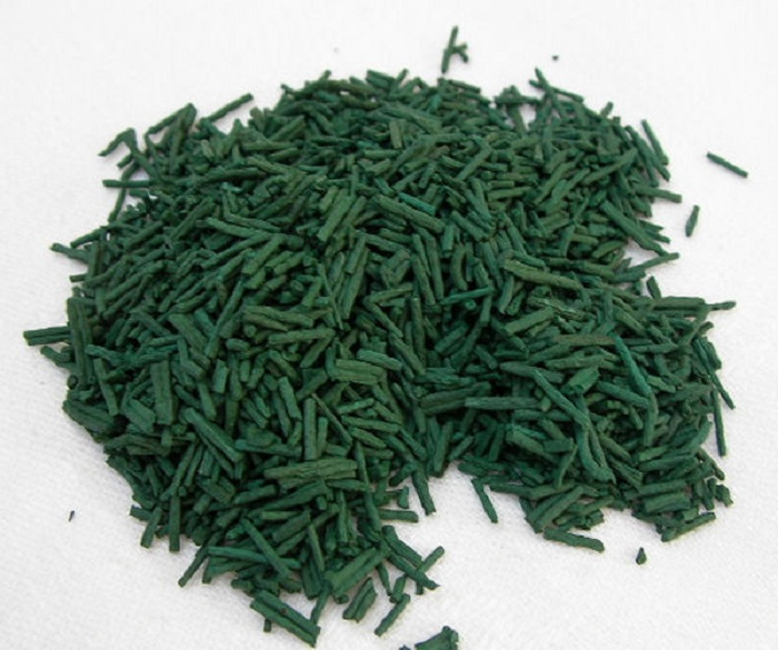 Photo Credit http://en.mr-ginseng.com/spirulina/