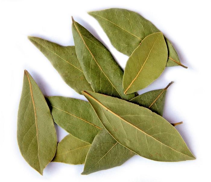 Bay-Leaf-3