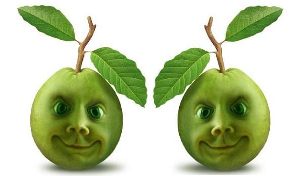Guavas Nutrition Facts Health Benefits Nutritional Value Calories