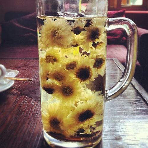 Image Source http://floraorganica.com.au/blogs/news/6053178-the-beauty-benefits-of-chinese-chrysanthemum-tea