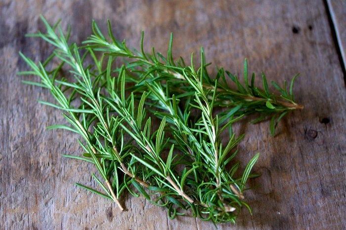 Photo Credit http://tcpermaculture.com/site/2013/12/16/permaculture-plants-rosemary/