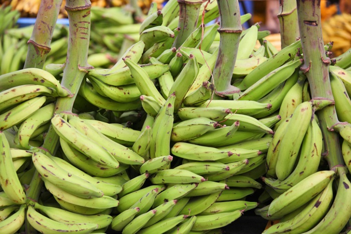 Photo Credit http://food.ndtv.com/ingredient/plantain-701208