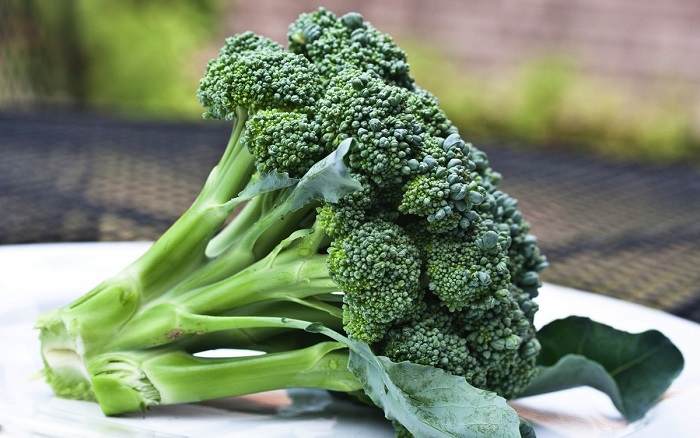 Photo Credit http://modernfarmer.com/2014/10/treatment-autism-found-broccoli/